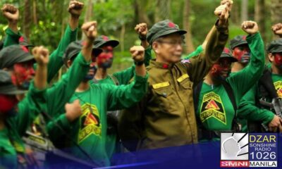 Makaka-survive ang New People's Army hangga't nandiyan ang partylist law.