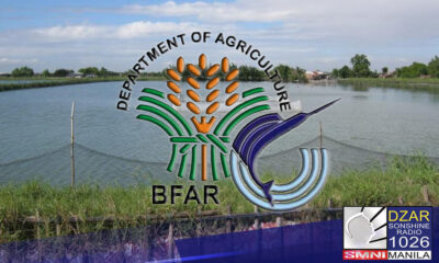 Maraming salik kung bakit isinusulong ngayon ni Kabayan Partylist Rep. Ron Salo ang paglikha ng Department of Fisheries and Aquatic Resources.