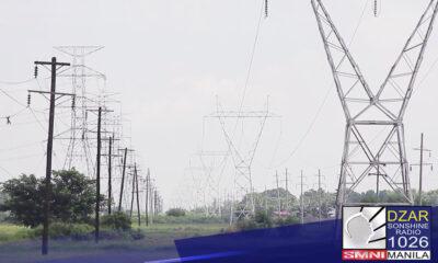 Nakakuha ng suporta ang DOE sa rekomendasyon nito na ibalik na sa gobyerno ang pamamahala ng power grid ng bansa matapos ang brownout sa Luzon Area.