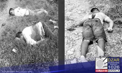 Inatasan ni PNP chief Police General Guillermo Eleazar na tugisin ang mga miyembro ng NPA na sangkot sa pagpatay sa tatlong vendors sa Palanas, Masbate.