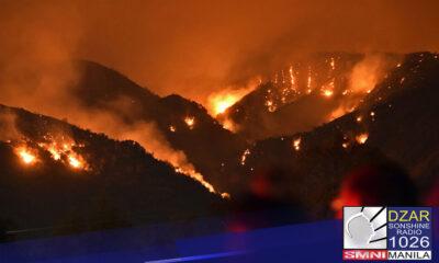 Mahigit 800 wildfires, naitala sa Italy