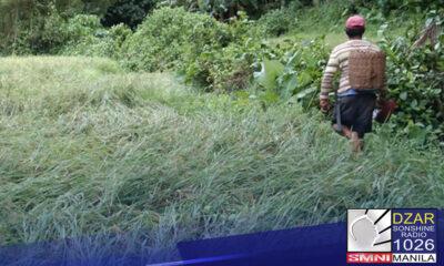 DAHIL sa malaking pinsala sa agrikultura , iginiit ni Sen. Cynthia A. Villar ang agarang pinansiyal na tulong sa mga Pilipinong magsasaka.
